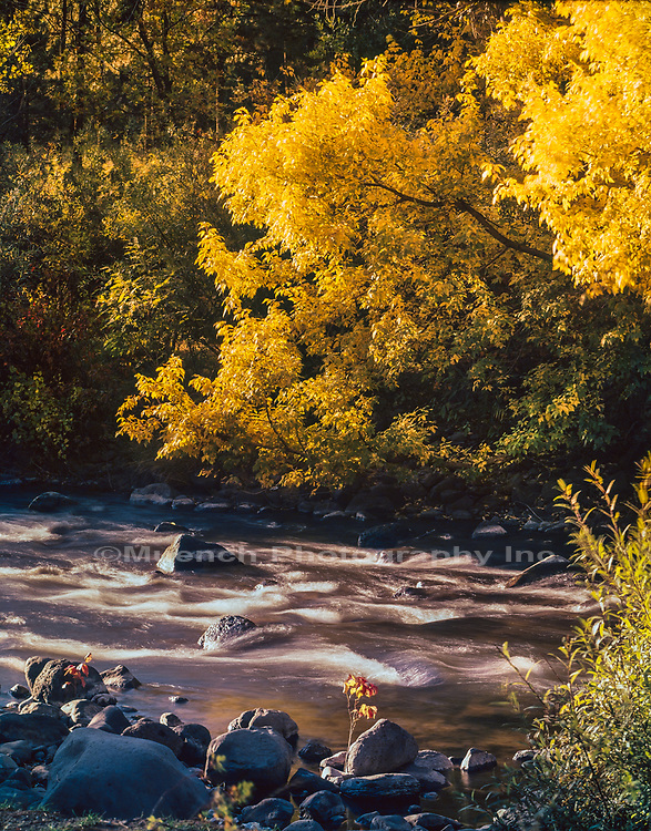North Fork White River,White Mountains,Arizona