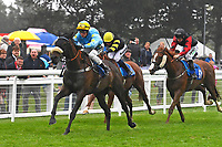 Winner of The Champagne Joseph Perrier Confined HandicapBlistering Bob ridden by William Cox and trained by Roger Teal during Horse Racing at Salisbury Racecourse on 14th August 2019
