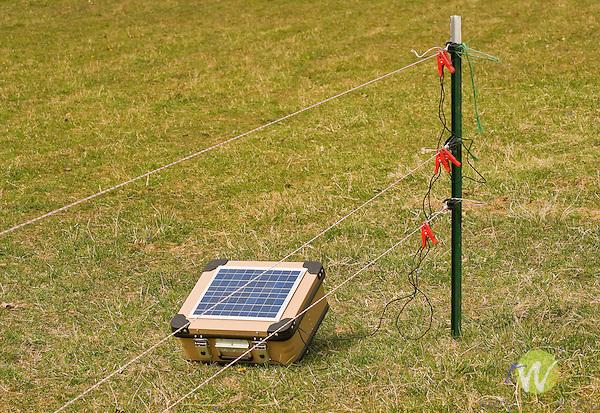 Walnut Run Farm. Solar powered electric fence.