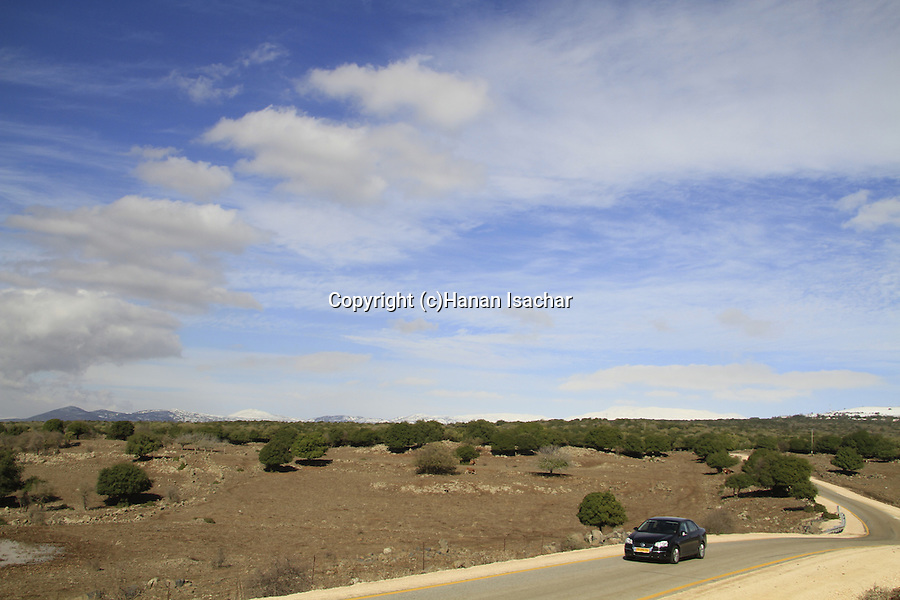 Golan Heights, road 978 in Odem forest
