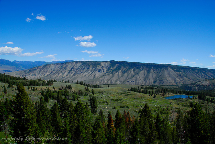 LaMar Valley of Yellowstone National Park