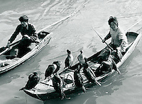 Kormoran-Fischen in Yixing, China 1989