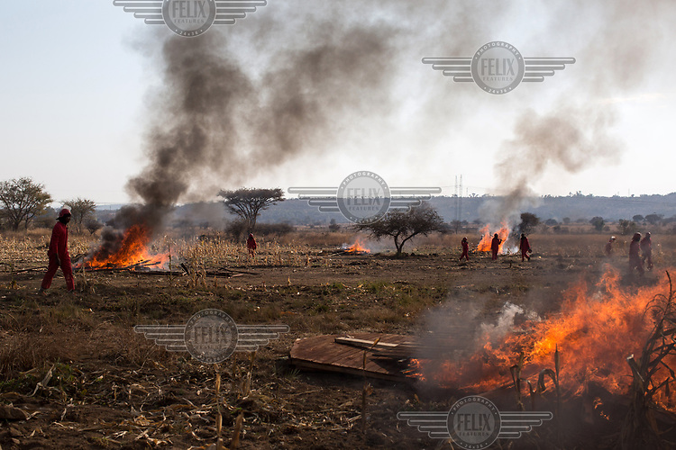 Members of the Red Ants walk among the burning remnants of shacks that had been built illegally on private land have were demolished and burned by the security force. The Red Ants are a controversial private security company often hired to clear squatters from land and so-called 'hijacked' properties.