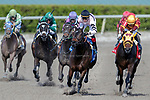 HALLANDALE BEACH, FL - December 16: Lewis Bay #3 wins The $100,000 Rampart Stakes (G3) for trainer Chad C. Brown with jockey Irad Ortiz, Jr.(3)  in the irons at Gulfstream Park on December 16, 2017 in Hallandale Beach, FL. (Photo by Bob Aaron/Eclipse Sportswire/Getty Images)
