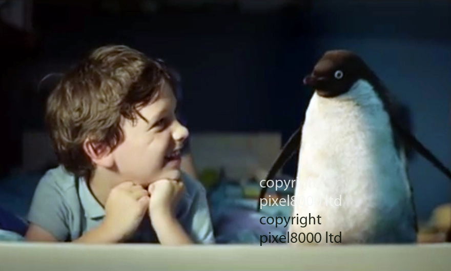 John Lewis Advert Xmas 2014<br /> Stars little boy named &quot;Sam&quot; and &quot;Monty The Penguin&quot;<br /> <br /> Boy has pet penguin. Watch TV together and play together.<br /> <br /> <br /> <br /> <br /> Pic supplied by Pixel 8000 Ltd