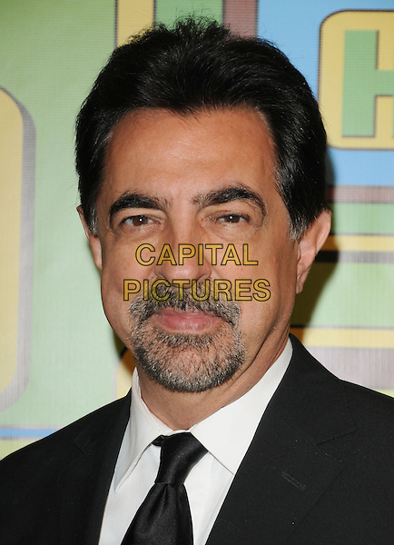 JOE MANTEGNA.The HBO's Post Golden Globes Party held at The Beverly Hilton Hotel in Beverly Hills, California, USA..January 16th, 2011.headshot portrait black goatee facial hair white.CAP/RKE/DVS.©DVS/RockinExposures/Capital Pictures.