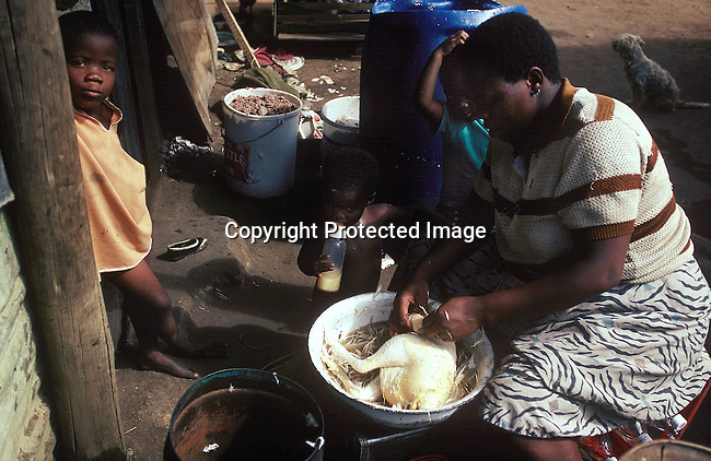 LSTOGEN30050.Lifestyle. Townships. General. Johannesburg. A woman cleans a chicken in a basin with children standing around her. 2/96. Rural living. Poverty. Food, defeathered.©Per-Anders Pettersson/iAfrika Photos