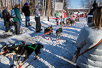 Sigrid Ekran runs past a gauntlet of spectators as she comes off of Willow Lake during the Restart of the 2016 Iditarod in Willow, Alaska.  March 06, 2016.