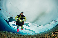 Taucher unter Eis, Eistaucher mit Sicherungsleine, Eistauchen, scuba diver under ice with safety robe, scuba icediving, Lechausee, Reutte, Weissenbach, Tirol, Oesterreich, Tyrol, Austria, MR Yes