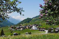 Switzerland, Canton Valais, community Grafschaft (district Biel) at valley Goms
