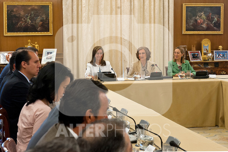 Sofia, Queen of Spain during the meeting of the Council of the Royal Board of Disability of the Ministry of Health, Social Services and Equality.In the picture with the Minister of building Ana Pastor (r) and the Minister of Health, Social Services and Equality Ana Mato (l)..(Alterphotos/Ricky)