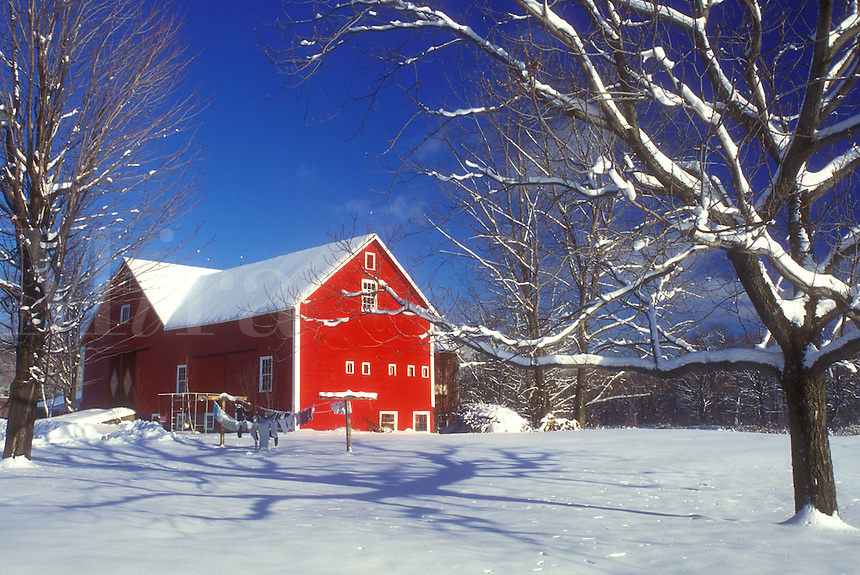 AJ5964, red barn, winter scene, snow, Vermont, Scenic view of a red barn in the snow under a clear blue sky in winter in Underhill in Chittenden County in the state of Vermont.