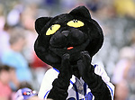 The Fort Worth Cats mascot, Dodger, in action during the American Association of Independant Professional Baseball game between the Grand Prairie AirHogs and the Fort Worth Cats at the historic LaGrave Baseball Field in Fort Worth, Tx. Fort Worth defeats Grand Prairie 6 to 1.....