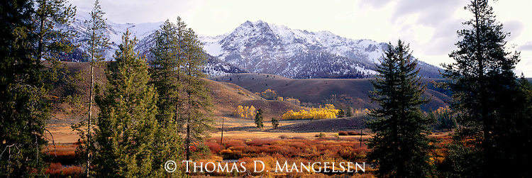 Fall color below snow-covered peaks near Sun Valley, Idaho.