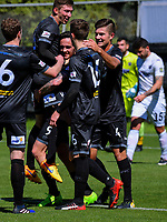 Team Wellington players celebrate the first-half equaliser during the ISPS Handa Premiership football Charity Cup match between Team Wellington and Auckland City FC at David Farrington Park in Wellington, New Zealand on Sunday, 15 October 2017. Photo: Dave Lintott / lintottphoto.co.nz