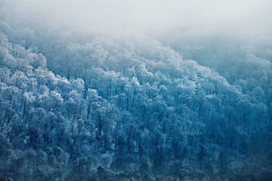 Azerbaijan, Caucasus Mountains, Gusar (Qusar) Rayon, November 25, 2011<br /> Forests covered by snow in the northern Gusar region. Gusar is located in the foothills of the Greater Caucasus Mountains and is known as &ldquo;The Northern Gateway&rdquo; to the Shahdagh mountain. <br /> <br /> Azerba&iuml;djan, montagnes du Caucase, R&eacute;gion de Gusar (Qusar), 25 novembre 2011 <br /> For&ecirc;t recouverte de neige dans le nord de la r&eacute;gion de Gousar, situ&eacute;e sur les collines des plus hautes montagnes du Caucase et connue comme &laquo; La Porte du Nord &raquo; au sommet de la montagne Chahdagh.
