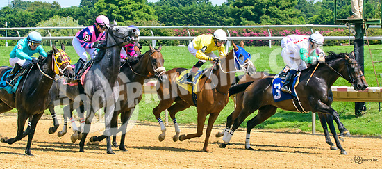 Awake At T Wire winning at Delaware Park on 8/12/17