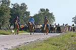 Images of ranch life and scenery from Florida along with the local wildlife.