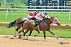 Wild For Love winning at Delaware Park on 7/1/15