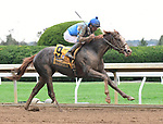 Lexington KY - October 7 Free Drop Billy wins the 104th running of the Claiborne Breeders' Futurity (Grade 1) for owner Albaugh Family Stables, trainer Dale Romans and jockey Robby Albarado.  October 7, 2017