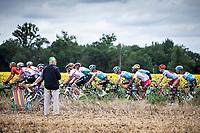 peloton riding along <br /> <br /> Stage 12: Toulouse to Bagnères-de-Bigorre (209km)<br /> 106th Tour de France 2019 (2.UWT)<br /> <br /> ©kramon