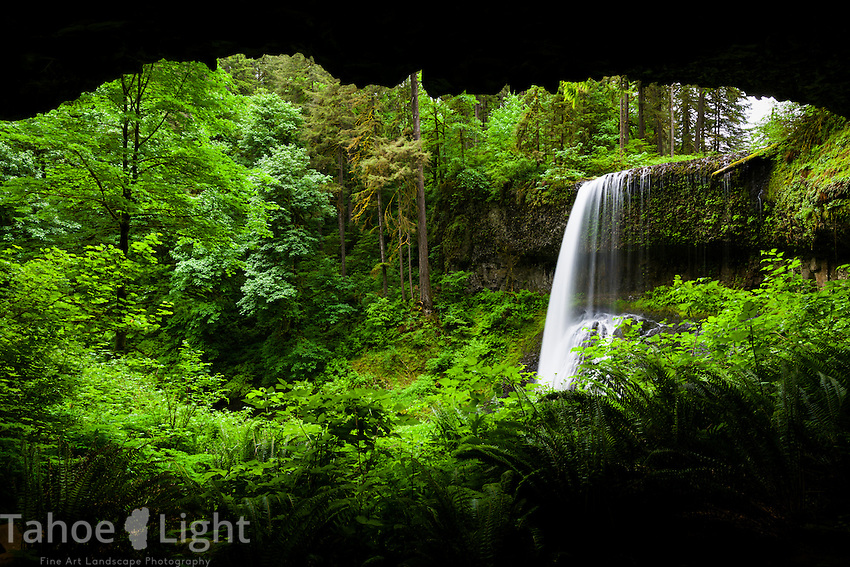 Behind Middle North Falls in the Silver Falls State Park in Oregon. There are 10 different waterfalls in a roughly 8 mile hike within the park, most of which you can walk behind.