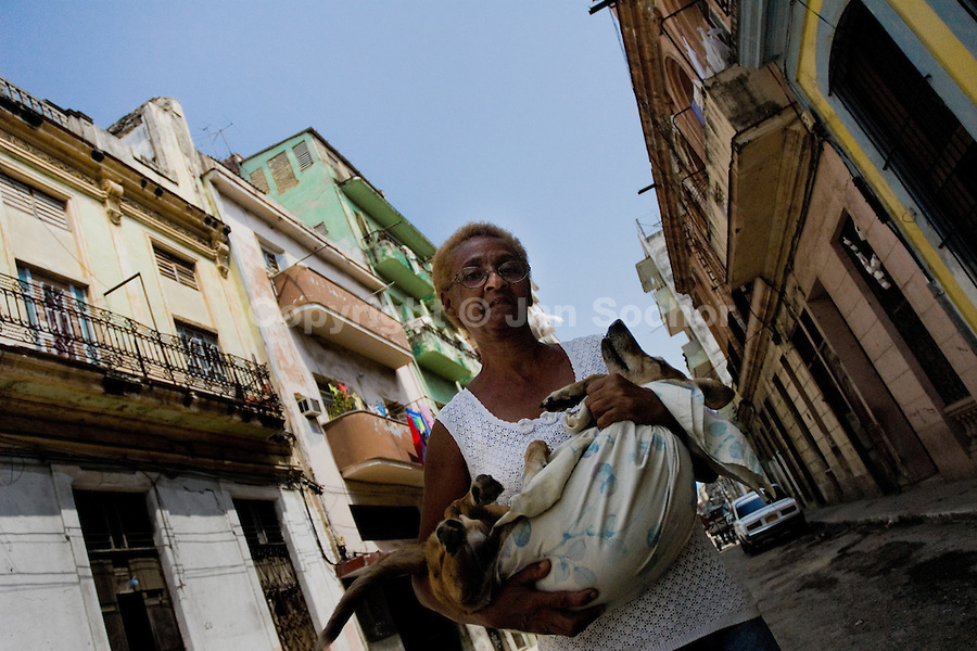 A Cuban woman walks on the street holding a sick pet dog, Havana, Cuba, 12 August 2008. About 50 years after the national rebellion, led by Fidel Castro, and adopting the communist ideology shortly after the victory, the Caribbean island of Cuba is the only country in Americas having the communist political system. Although the Cuban state-controlled economy has never been developed enough to allow Cubans living in social conditions similar to the US or to Europe, mostly middle-age and older Cubans still support the Castro Brothers' regime and the idea of the Cuban Revolution. Since the 1990s Cuba struggles with chronic economic crisis and mainly young Cubans call for the economic changes.