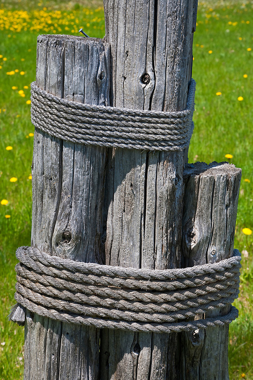 Ropes wrapped aroung pilings near the shore of Lake Michigan; Door County, WI