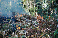 Slash-and-burn agriculture by Indians of Guiana Highlands of Venezuela: boys setting fire to cut forest to cultivate it ; ashes privide fertilize