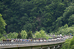 The peleton in action during Stage 14 of the 2018 Giro d'Italia, running 186km from San Vito al Tagliamento to Monte Zoncolan features Europe's hardest climb, Italy. 19th May 2018.<br /> Picture: LaPresse/Fabio Ferrari | Cyclefile<br /> <br /> <br /> All photos usage must carry mandatory copyright credit (&copy; Cyclefile | LaPresse/Fabio Ferrari)