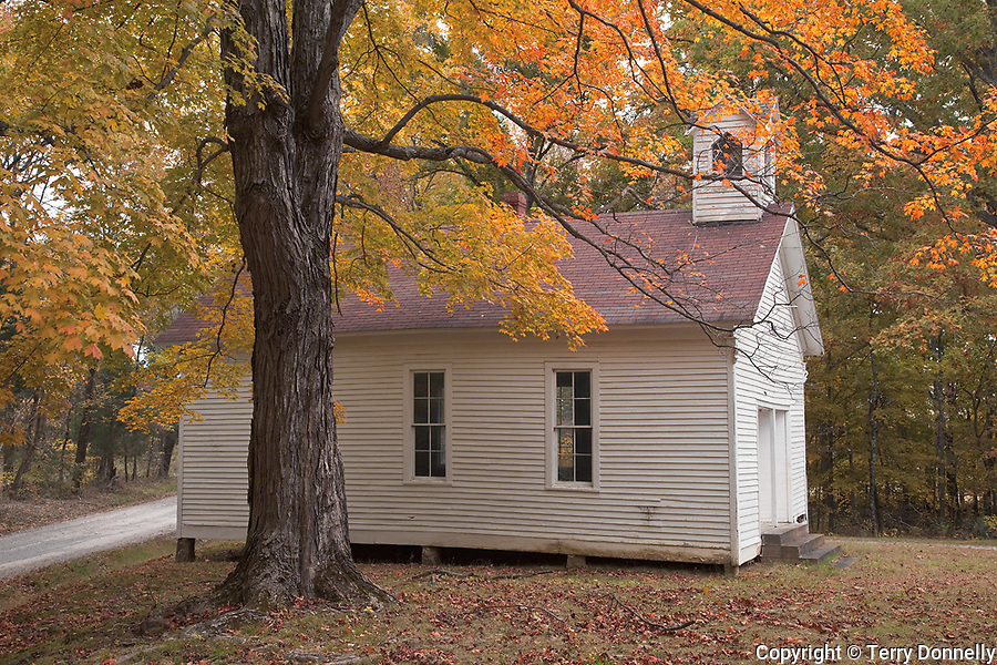 Pope County, IL<br /> Pleasant Ridge church framed with a maple tree in fall color, in the Shawnee National Forest
