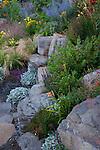 The drought tolerant garden