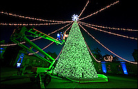BNPS.co.uk (01202 558833)<br /> Pix: PhilYeomans/BNPS<br /> <br /> Britains best Xmas tree...<br /> <br /> Longleat's unique 60ft 'Singing' Xmas is checked over by staff before visitors arrive at the Wiltshire Safari Park.<br /> <br /> The massive tree needs 15 men to construct it every festive season and contains 300,000 lights connected by six miles of cable, 3000 baubles and 24 flashing snowflakes.<br /> <br /> The bespoke tree was handmade by a team of British craftsman and plays carols as the lights flash in a choreographed sequence.