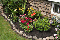 Mulched garden border edged with stones foundation plantings of annulas and perennials, zinnias, Echinacea, Hydrangea, New Guinea impatiens, rhododendron, lawn grass