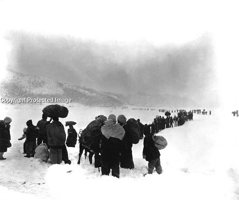 Long trek southward:  Seemingly endless file of Korean refugees slogs through snow outside of Kangnung, blocking withdrawal of ROK I Corps.  January 8, 1951.  Cpl. Walter Calmus. (Army)<br /> NARA FILE #:  111-SC-356475<br /> WAR &amp; CONFLICT BOOK #:  1477