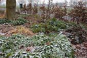 Wintertuin van Marrion Hoogenboom, tuinontwerper en hovenier.