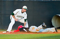 Cameron Cecil (5) of the Delaware State Hornets is tagged out by Shane Basen (8) of the Charlotte 49ers as he attempts to steal third base at Robert and Mariam Hayes Stadium on February 15, 2013 in Charlotte, North Carolina.  The 49ers defeated the Hornets 13-7.  (Brian Westerholt/Four Seam Images)