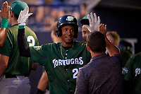 Daytona Tortugas Andy Sugilio (25) is congratulated by teammates after hitting a home run during a Florida State League game against the Tampa Tarpons on May 17, 2019 at George M. Steinbrenner Field in Tampa, Florida.  Daytona defeated Tampa 8-6.  (Mike Janes/Four Seam Images)