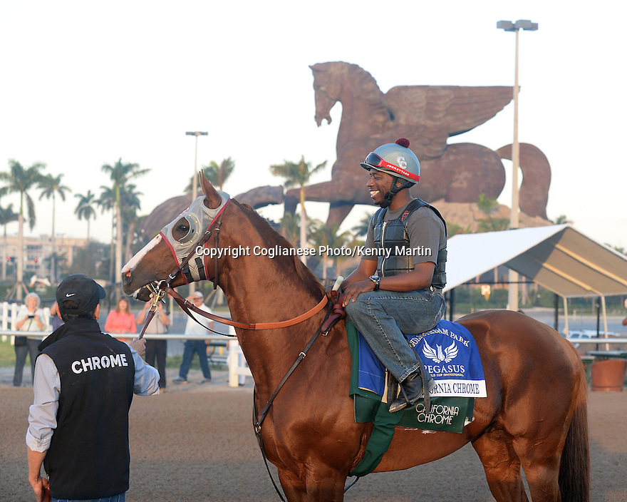 California Chrome on the track for his final breeze in prep for the Pegasus World Cup at Gulfstream Park 1/21/17.  Dihigi Gladney up.