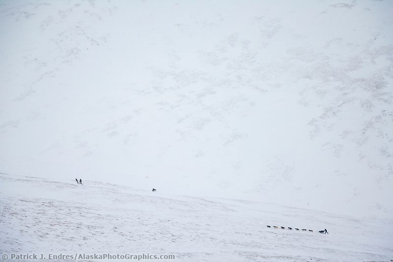 2006 Yukon Quest musher heads up Eagle Summit en route to Central.