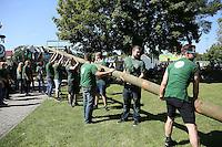 Worfeller Kerwegesellschaft stellt den Baum am Bürgerhaus auf