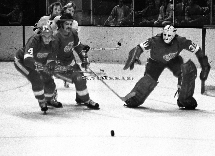 Seals vs the Red Wings: Henry Boucha and #4 Tommie Bergman in front of goalie Doug Grant. .(photo/Ron Riesterer)