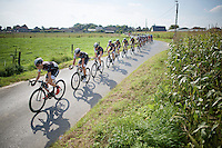 Trek Factory Racing Team controlling/driving the peloton<br /> <br /> 99th (open) Flemish Championships 2014<br /> (&quot;Kampioenschap van Vlaanderen&quot;)