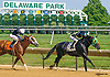 Green Gratto winning The Hockessin Stakes at Delaware Park on 7/16/16