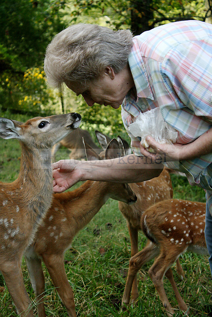 9.18.09 Carol Murr takes a quiet moment with one of the fawns after their bottle feeding.