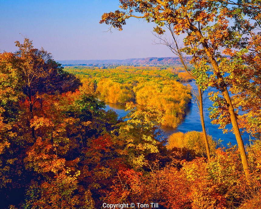 Afternoon Fall Color on the Upper Mississippi River, National Wildlife and Fish Refuge, Iowa