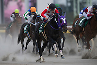 01-29-17 Negishi Stakes Tokyo Japan