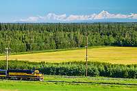 Alaska railroad passenger train, Alaska mountain range, university of Alaska experimental agricultural field, Fairbanks, Alaska
