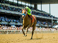 ELMONT, NY - JUNE 10:  War Story with Javier Castellano up wins the Brooklyn Stakes at Belmont Park on June 10, 2017 in Elmont, New York. (Photo by Alex Evers/Eclipse Sportswire/Getty Images)