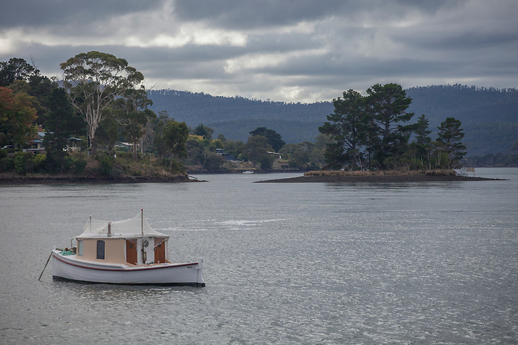 Vineyards, forested hills, and sheltered anchorages fringe the Tamar River  as it travels northward toward the Bass Strait from Launceston, Tasmania